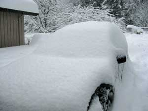 12_08_snow_01.jpg