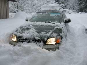 12_08_snow_02.jpg