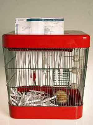 hamster-paper-shredder.jpg