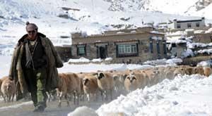 xinhua_tibet_snow.jpg