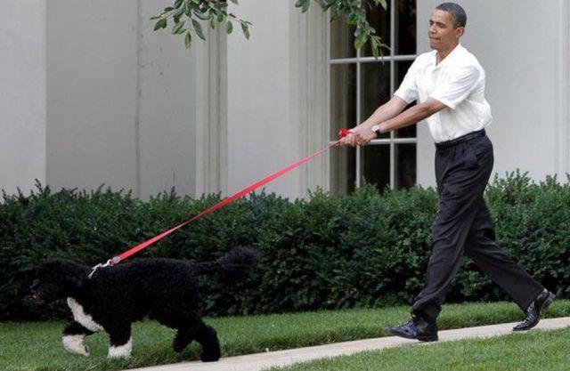 obama_bo_leader.jpg