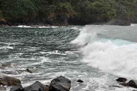 hana_surf02.jpg