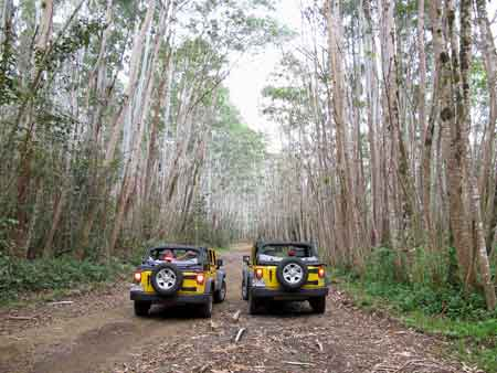 off_road_mt_wai_02.jpg