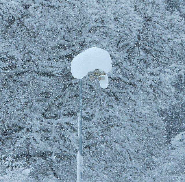 20140223-snow01.jpg