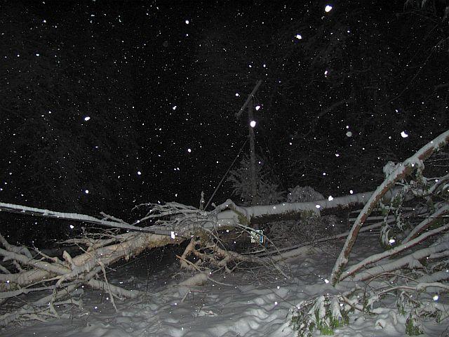 20140225-snow-wires.jpg
