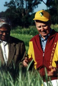 Borlaug_with_wheat.jpg