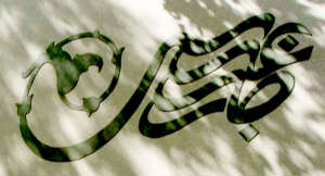 iraniantypo-01.jpg