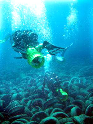 miami_artificial_reef_tires.jpg