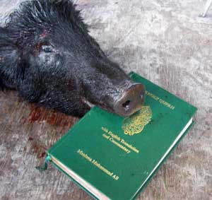 pig_blood_koran_02.jpg